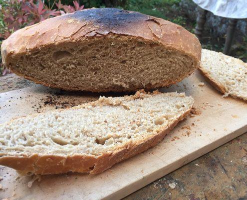 Brot aus dem Potjie Dutch Oven